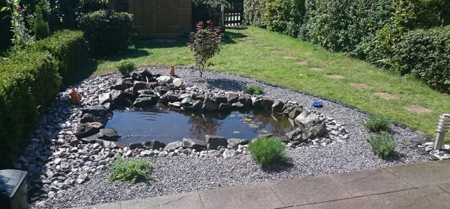 Teichbau_Umgestaltung_Gartenbau_ennepetal_ihr_gruenes_zuhause_Jan_Oeinck_Gartengestaltung_nachher